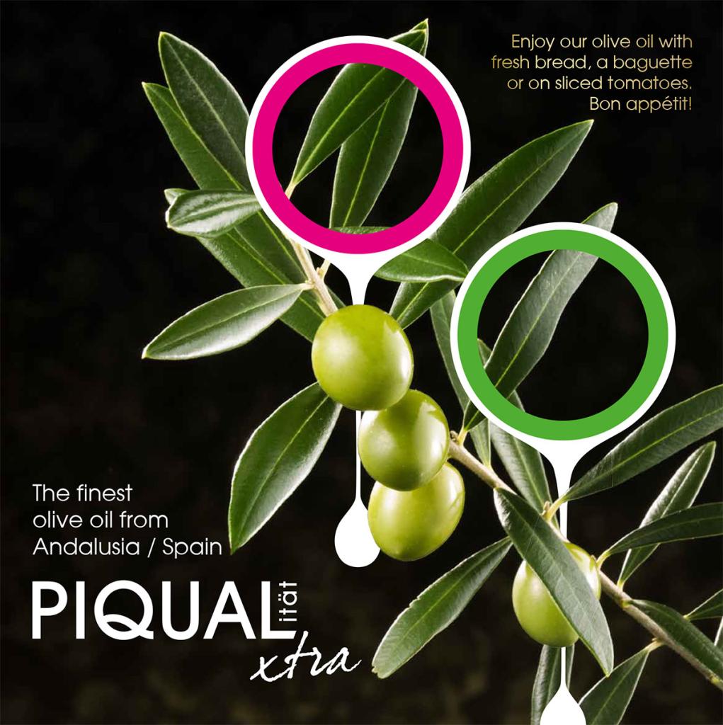 https://www.piqualxtra.de/wp-content/uploads/2015/06/Flyer_Piqualxtra_EN_full-1-1021x1024.jpg